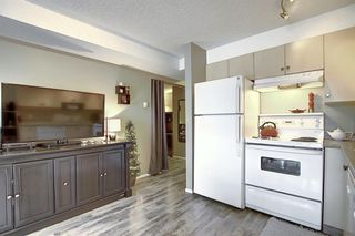 Photo 14: 3203 1620 70 Street SE in Calgary: Applewood Park Apartment for sale : MLS®# A1015666