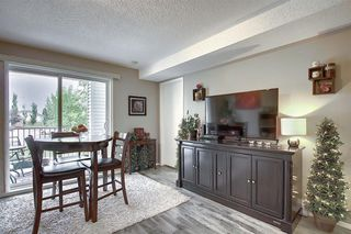 Photo 21: 3203 1620 70 Street SE in Calgary: Applewood Park Apartment for sale : MLS®# A1015666