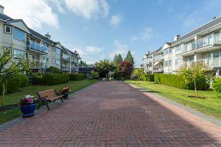 "Photo 21: 111 13959 16 Avenue in Surrey: Crescent Bch Ocean Pk. Condo for sale in ""White Rock Village (Wiltshire House )"" (South Surrey White Rock)  : MLS®# R2486697"