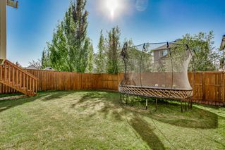 Photo 25: 1058 PRAIRIE SPRINGS Hill SW: Airdrie Detached for sale : MLS®# A1032821