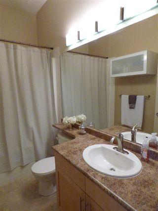 Photo 17: 419 7909 71 Street in Edmonton: Zone 17 Condo for sale : MLS®# E4169500