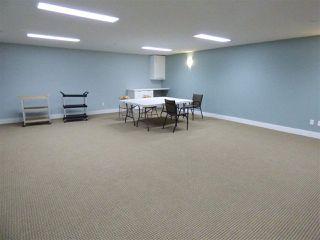 Photo 26: 419 7909 71 Street in Edmonton: Zone 17 Condo for sale : MLS®# E4169500