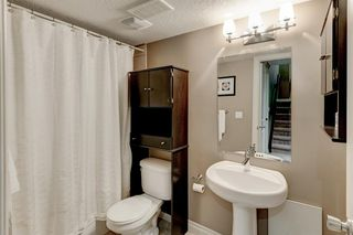 Photo 23: 225 24 Avenue NW in Calgary: Tuxedo Park Semi Detached for sale : MLS®# A1015809