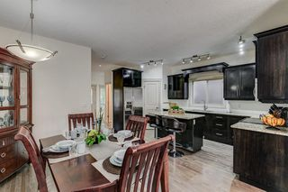 Photo 10: 225 24 Avenue NW in Calgary: Tuxedo Park Semi Detached for sale : MLS®# A1015809