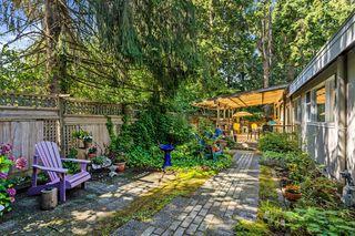 "Photo 21: 12313 208 Street in Maple Ridge: Northwest Maple Ridge House for sale in ""West Side"" : MLS®# R2492745"