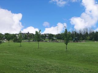 Photo 43: 6024 5 Avenue in Edmonton: Zone 53 House for sale : MLS®# E4204317