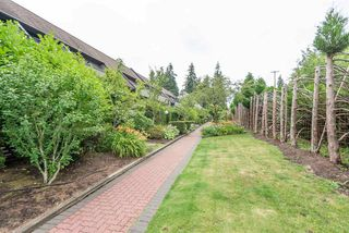 "Photo 24: 204 7377 SALISBURY Avenue in Burnaby: Highgate Condo for sale in ""The Beresford"" (Burnaby South)  : MLS®# R2488057"