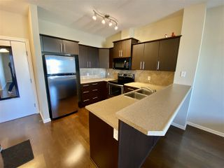 Photo 5: 339 263 MACEWAN Road in Edmonton: Zone 55 Condo for sale : MLS®# E4219397