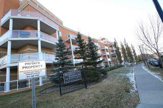 Photo 11: 339 263 MACEWAN Road in Edmonton: Zone 55 Condo for sale : MLS®# E4219397
