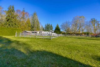 "Photo 28: 24937 ROBERTSON Crescent in Langley: Salmon River House for sale in ""Salmon River"" : MLS®# R2517421"