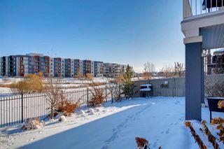 Photo 41: 2646 WATCHER Way in Edmonton: Zone 56 House for sale : MLS®# E4221075
