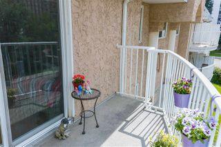 Photo 20: 308 6210 101 Avenue in Edmonton: Zone 19 Condo for sale : MLS®# E4169740