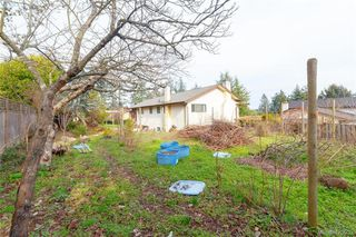 Photo 17: 7246 Walcer Place in SAANICHTON: CS Saanichton Single Family Detached for sale (Central Saanich)  : MLS®# 420932