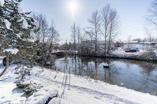 Photo 6: 205 4955 RIVER ROAD in Shorewalk: Neilsen Grove Home for sale ()  : MLS®# R2341152