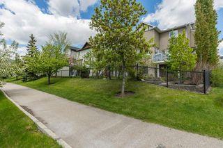 Photo 31: 234 SPRINGBOROUGH Way SW in Calgary: Springbank Hill Detached for sale : MLS®# C4300509