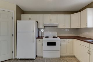 Photo 13: 20219 54 Ave in Edmonton: Zone 58 House for sale : MLS®# E4203647
