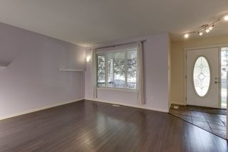 Photo 9: 20219 54 Ave in Edmonton: Zone 58 House for sale : MLS®# E4203647