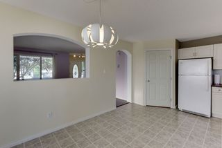 Photo 18: 20219 54 Ave in Edmonton: Zone 58 House for sale : MLS®# E4203647