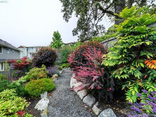 Photo 29: 821 Rainbow Cres in VICTORIA: SE High Quadra House for sale (Saanich East)  : MLS®# 819967