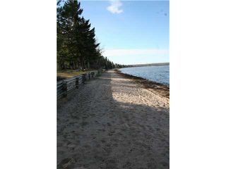 Photo 4: 510 1ST AVE: Rural Wetaskiwin County Rural Land/Vacant Lot for sale : MLS®# E4170363