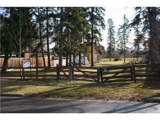 Photo 2: 510 1ST AVE: Rural Wetaskiwin County Rural Land/Vacant Lot for sale : MLS®# E4170363