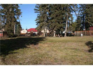 Photo 3: 510 1ST AVE: Rural Wetaskiwin County Rural Land/Vacant Lot for sale : MLS®# E4170363