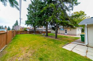 Photo 30: 18 Sonora Drive: St. Albert House for sale : MLS®# E4177449