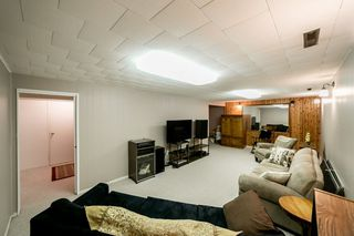 Photo 20: 18 Sonora Drive: St. Albert House for sale : MLS®# E4177449