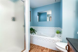 Photo 16: 12 DANIELS Way: Sherwood Park House for sale : MLS®# E4165525