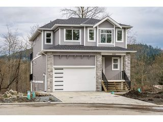 Photo 1: 11090 241A Street in Maple Ridge: Cottonwood MR House for sale : MLS®# R2439723