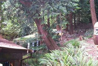 Photo 4: 6043 CORACLE Drive in Sechelt: Sechelt District Manufactured Home for sale (Sunshine Coast)  : MLS®# V597455