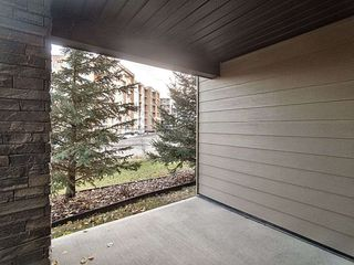 Photo 19: 108 12035 22 Avenue in Edmonton: Zone 55 Condo for sale : MLS®# E4178343