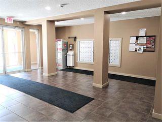 Photo 23: 217 12025 22 Avenue SW in Edmonton: Zone 55 Condo for sale : MLS®# E4199486