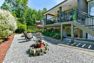 Photo 37: 21631 92 Avenue in Langley: Walnut Grove House for sale : MLS®# R2477335