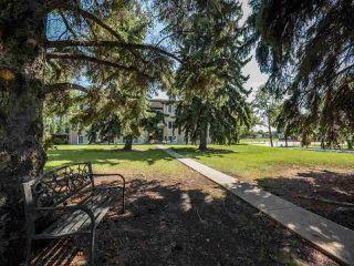 Photo 15: 9 6805 112 Street in Edmonton: Zone 15 Condo for sale : MLS®# E4186758