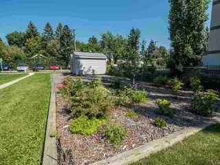 Photo 13: 9 6805 112 Street in Edmonton: Zone 15 Condo for sale : MLS®# E4186758