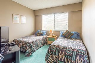 Photo 11: 1200 COTTONWOOD Avenue in Coquitlam: Central Coquitlam House for sale : MLS®# R2472001