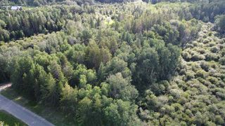 Photo 4: 19 26213 TWP RD 512: Rural Parkland County Rural Land/Vacant Lot for sale : MLS®# E4205090