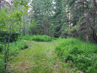 Photo 12: 19 26213 TWP RD 512: Rural Parkland County Rural Land/Vacant Lot for sale : MLS®# E4205090