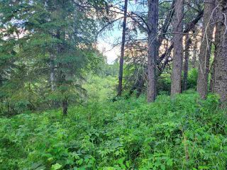 Photo 14: 19 26213 TWP RD 512: Rural Parkland County Rural Land/Vacant Lot for sale : MLS®# E4205090