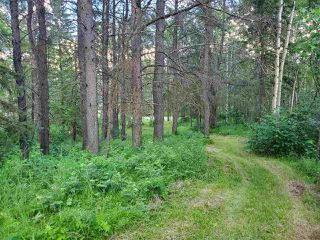 Photo 13: 19 26213 TWP RD 512: Rural Parkland County Rural Land/Vacant Lot for sale : MLS®# E4205090