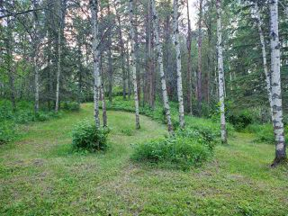 Photo 11: 19 26213 TWP RD 512: Rural Parkland County Rural Land/Vacant Lot for sale : MLS®# E4205090