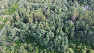 Photo 10: 19 26213 TWP RD 512: Rural Parkland County Rural Land/Vacant Lot for sale : MLS®# E4205090