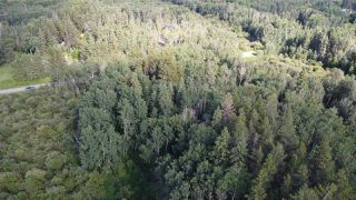 Photo 5: 19 26213 TWP RD 512: Rural Parkland County Rural Land/Vacant Lot for sale : MLS®# E4205090