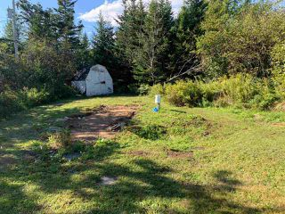 Photo 14: 383 Bellefontaine Road in West Chezzetcook: 31-Lawrencetown, Lake Echo, Porters Lake Residential for sale (Halifax-Dartmouth)  : MLS®# 202021251