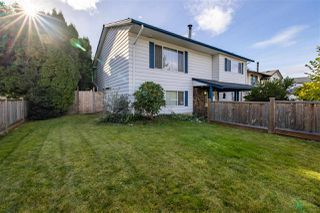 Photo 6: 20562 50A Avenue in Langley: Langley City House for sale : MLS®# R2507888