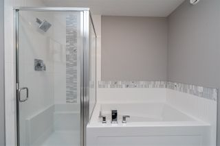 Photo 50: 22103 87 Avenue in Edmonton: Zone 58 House for sale : MLS®# E4215801