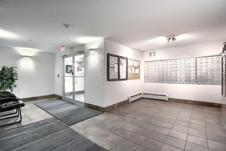Photo 28: 2411 6224 17 Avenue SE in Calgary: Red Carpet Apartment for sale : MLS®# A1045835
