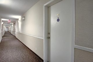 Photo 26: 2411 6224 17 Avenue SE in Calgary: Red Carpet Apartment for sale : MLS®# A1045835