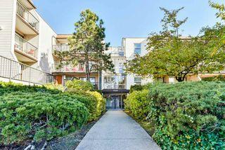 """Main Photo: 103 15288 100 Avenue in Surrey: Guildford Condo for sale in """"Cedar Grove"""" (North Surrey)  : MLS®# R2401717"""